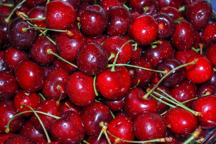 Cherries Jubilee Fresh Vegetarian Vegetation Cherry Fruit Full Frame No People Close-up Indoors  Nature