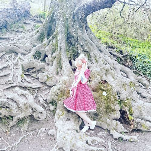 One Person Outdoors People Day 50s Vintage Vintage Style Retro Retro Style Petticoatdress Petticoat Ditavonteese Dita Von Teese Tree Tree Trunk Trees Roots Roots Of Tree Dress Wonderland Woods Blond Hair Blonde Girl Blond Blonde Hair Blue Eyes. First Eyeem Photo