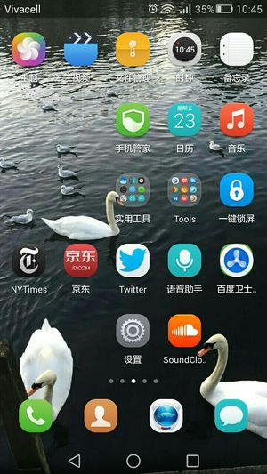 swan and lake is from friend's photo. It is used for my mobile screen. Relaxing Hello World First Eyeem Photo