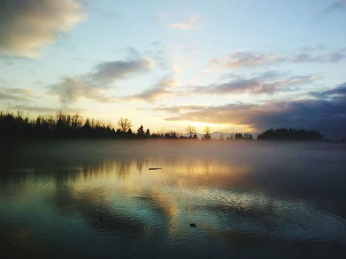 Abbotsford BC Evening Walk Mill Lake Park Evening Sunset Evening Fog Lake Mist