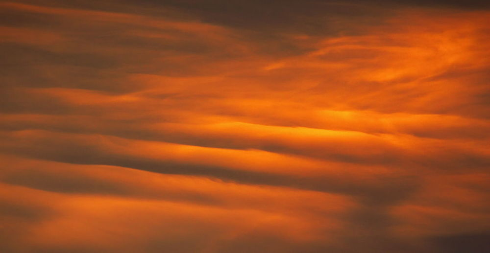Waves in the clouds. Orange Color Cloud - Sky Sky Backgrounds Dramatic Sky Scenics - Nature No People Cloudscape Beauty In Nature Atmosphere Abstract Environment Abstract Backgrounds Tranquil Scene Tranquility Sunset Idyllic Dark Softness Nature NatureZiesel777 EyeEm Best Shots EyeEm Nature Lover Wave Clouds