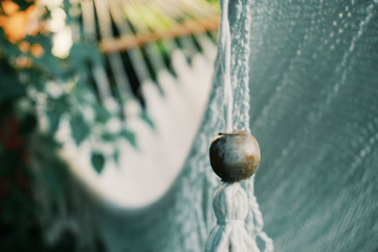 Close-up of fruit hanging on rope