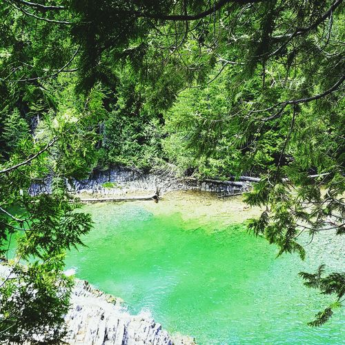 Water Green Color Nature Outdoors Day High Angle View Beauty In Nature Travel Destinations