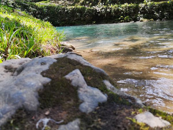 Foto Celular Water Beach Grass Close-up Pebble Beach Stone Rock Tranquil Scene Stream - Flowing Water