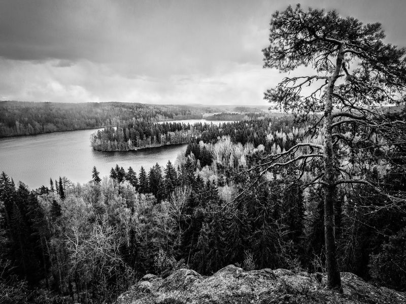 Black & White Lake View Aerial View Aulanko Beauty In Nature Black And White Black And White Landscape Black And White Nature Branch Cloud - Sky Clous And Sky Day Finland Growth Hills And Valleys Hilltop Nature No People Outdoors Peaceful View Plant Scenics Sky Stormy Sky Tranquility Tree