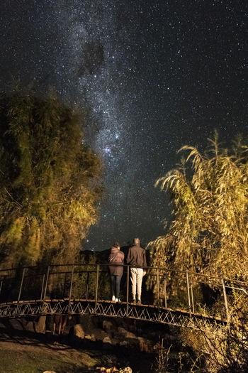 People standing by tree against sky at night