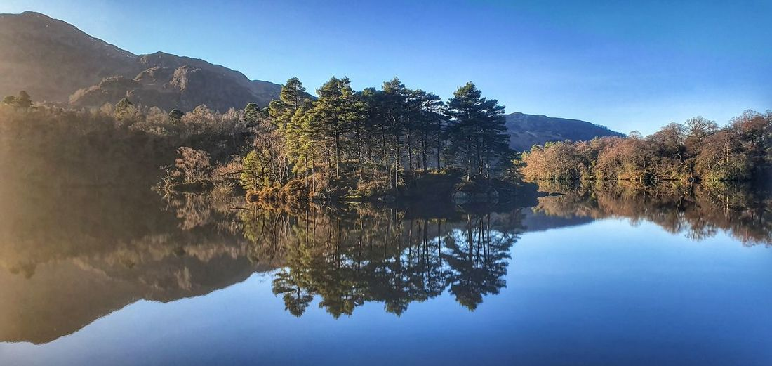 Scenic view of lake by trees against clear blue sky