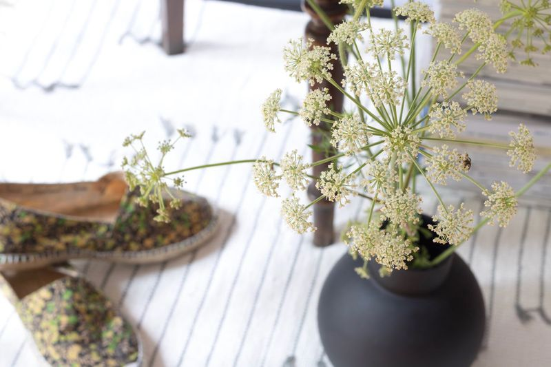 Table Flower Indoors  Vase High Angle View No People Plant Home Interior Growth Freshness Day Close-up Beauty In Nature Fragility Flower Head Nature Ready-to-eat Interior Architecture Copper  Koper Growth Scandinavian Nature Beauty In Nature Home Sweet Home