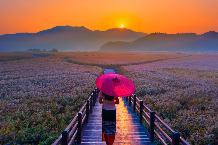 Rear view of woman with umbrella walking on footpath during sunset