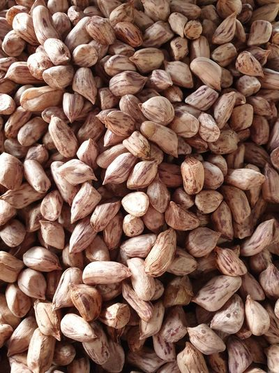 Large group of nuts for sales