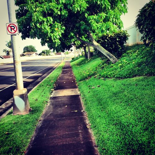 Choose The Path You Want To Walk