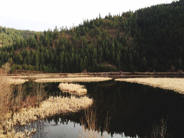 Outdoors Tranquility Mountains Lake Grass Sky Reflection Idaho