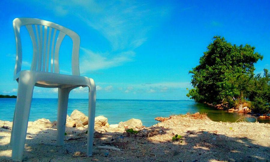 My photography.. Islandgirl Blue Sky EyeEm Best Shots Naturelovers Relaxing EyeEm Best Edits Sunnyday☀️ Hello World Green Enjoying Nature love this shot.❤