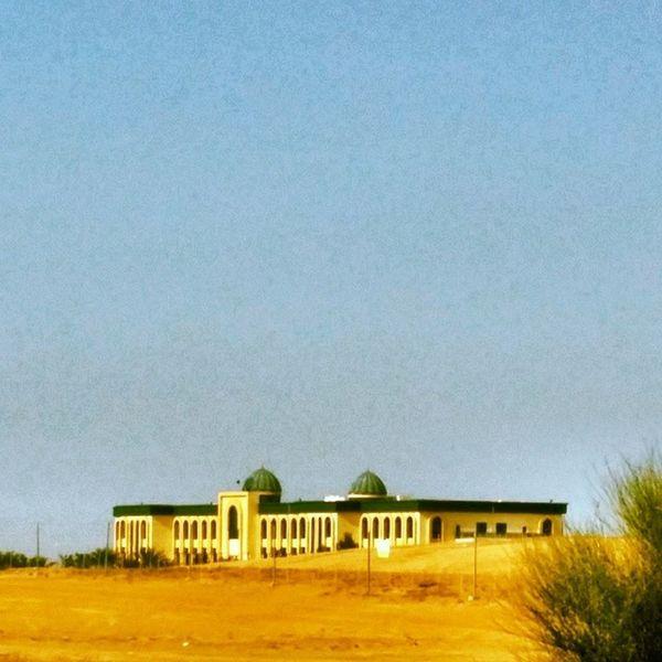 Etihad University
