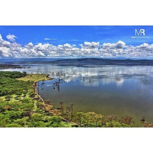 I am grateful to have experienced the beauty of Kenya . ThisIsAfrica Africa LakeNakuru LakeNakuruNationalPark