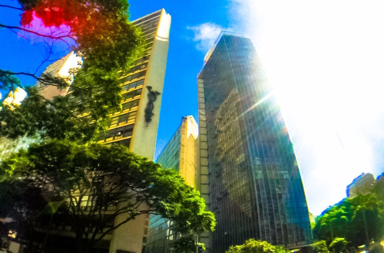 architecture, building exterior, built structure, modern, skyscraper, tree, low angle view, lens flare, city, sky, no people, sunlight, day, outdoors