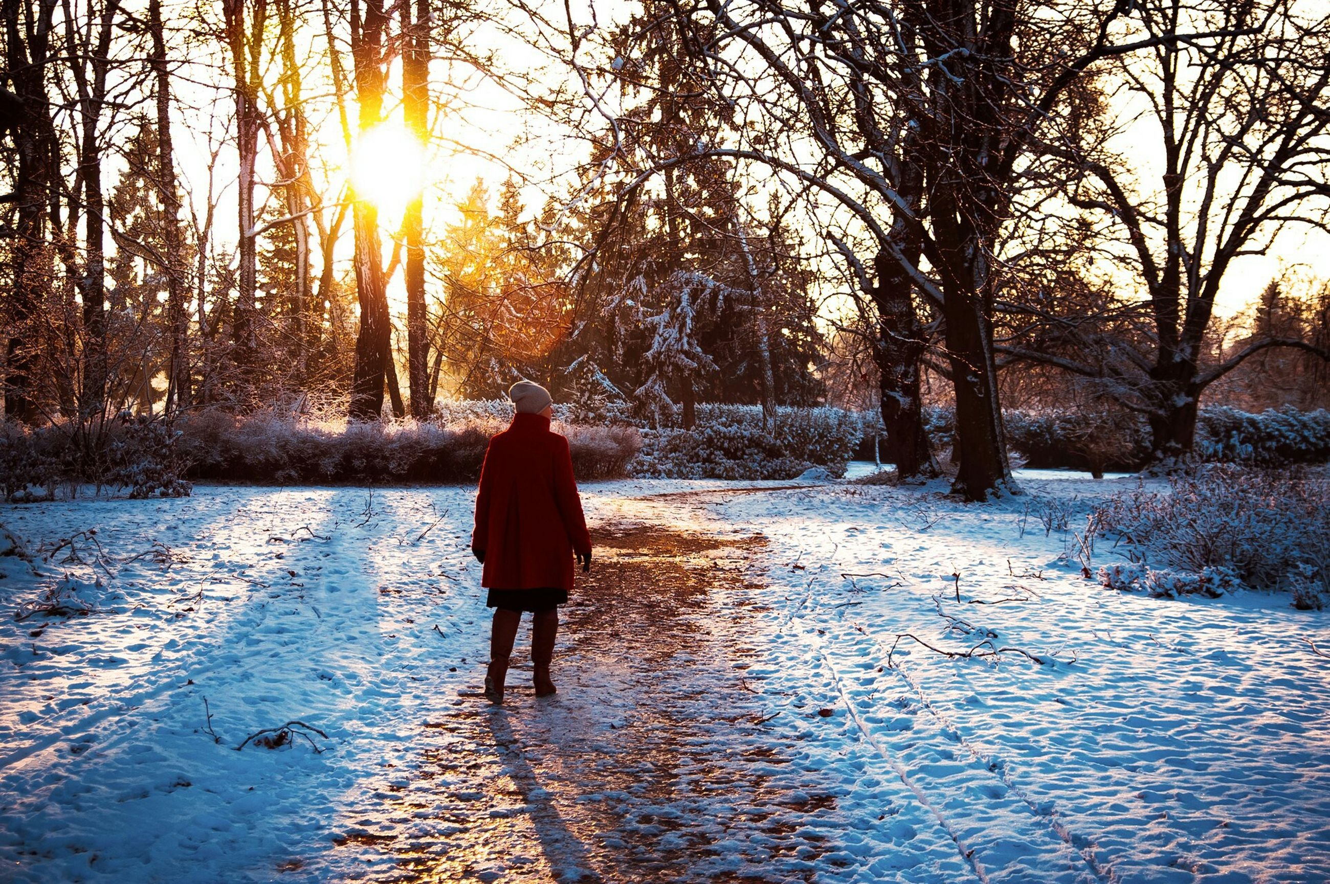 winter, snow, cold temperature, season, full length, rear view, walking, lifestyles, weather, leisure activity, tree, frozen, sun, water, standing, nature, men, sunlight