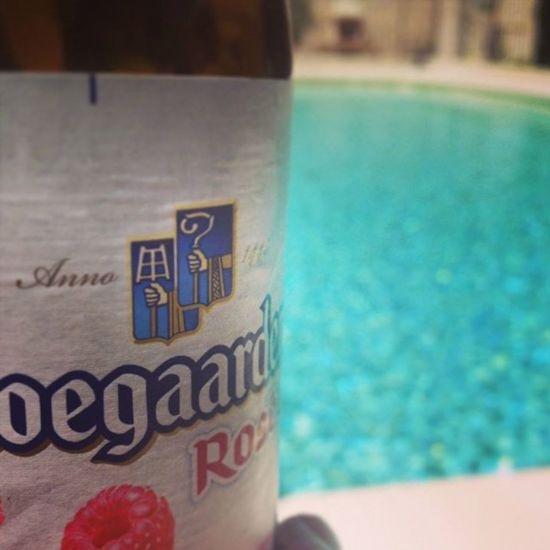 Pink Up your Pool. 43° ? peanuts.... Poollife Pinkbeer WhiteBeer Frais  Lesud 😉