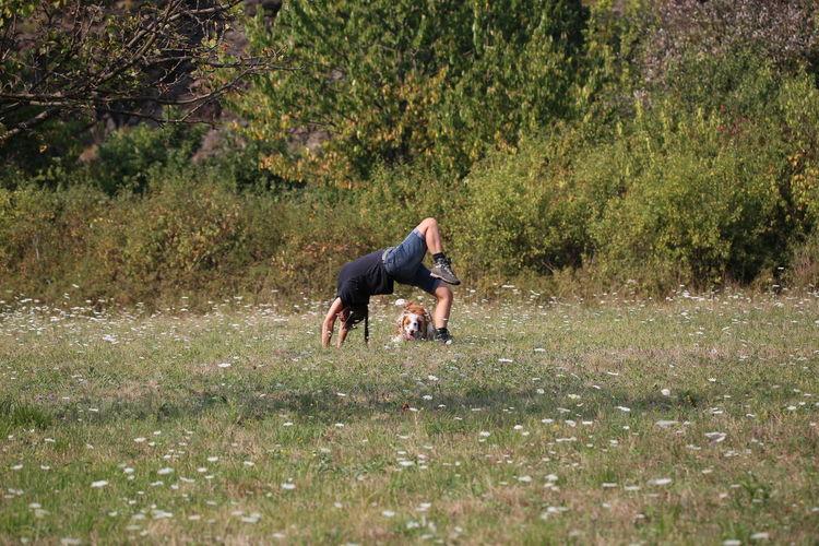 Man Doing Stunt By Dog On Grassy Field