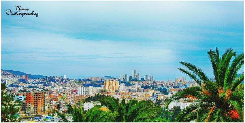 City Urban Skyline Travel Travel Destinations Annaba Algeria Photography