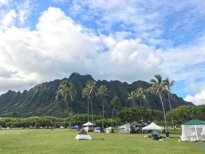 Camping!! Weekend Activities Activity Weekend Hawaii Life Hawaii View Gorgeous Mountain Beachpark Kualoa Camping Sky Cloud - Sky Nature Real People Grass Tree Beauty In Nature Outdoors Green Color Landscape Leisure Activity Lifestyles Tent