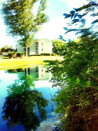 Beautiful reflections Thebeautifuldivide Sunnydayfeeling Whynotjusttry MyHeart❤ Mysoul  Natureisinside Imaginate