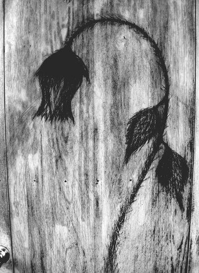 art on my door. Sketch Black & White My Back Door Roses