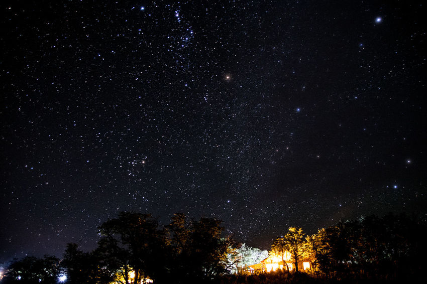 cielo del sur argentino Night Nikonphotography Juanmogor EyeEm Selects Night Star - Space Astronomy Space And Astronomy Constellation Galaxy Space Infinity No People Star Field Nature Low Angle View Scenics Outdoors Sky Beauty In Nature Tranquil Scene Illuminated Milky Way Space Exploration