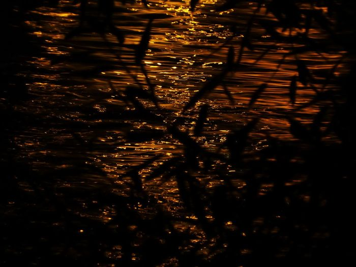 Looks like liquid gold😍love it Miss You ♡ Nightlights Reflections Happy Moment♥ Lucky Me🦄 Thankful🦄 Vienna❤ Lightreflections In Water Zooooom❤ Memories ❤ Beauty In Nature Simple Beauty Simple Photography For My Friends🙄🙋♀️ Danube By Night Water Rippled Reflection Backgrounds
