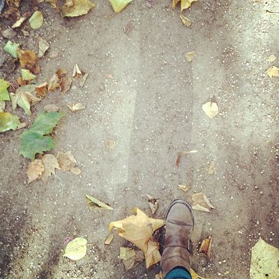 #autunno #autumn #fall #herbst #leaves #feet #boots #walking #berlin #schillerkiez #schillerpromenade Schillerpromenade Globalfootprints Berlin Feet Walking Leaves Autumn Fall Herbst Boots Autunno  Whpbehindthelens Schillerkiez