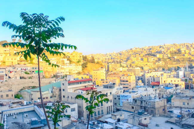 Buildings Architecture Cityscape Contrasting Colors Jordan Downtown Middle East Standing Trees Sunset