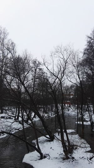 Akerselva Bare Tree Beauty In Nature Branch Cold Temperature Day Frozen Nature No People Outdoors Scenics Sky Snow Snowing Tranquility Tree Trees Water Winter Winter