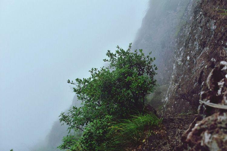 Hikingadventures Zhejiang,China Mountains Hiking