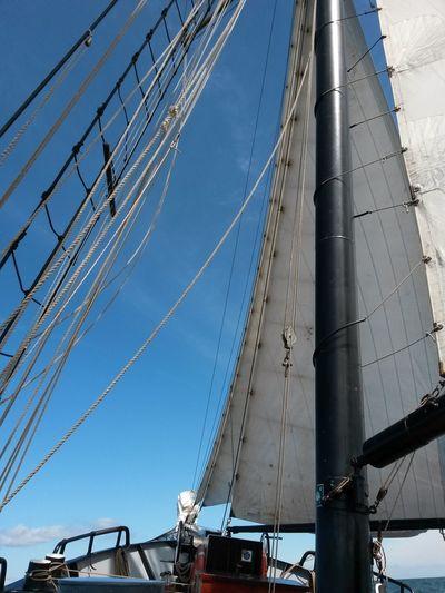 Urlaub & Reisen Segeln Hello EyeEm Sommer Ostsee Hi! Richtung Dänemark Zweimaster Dänemark Segelschiff Taking Photos