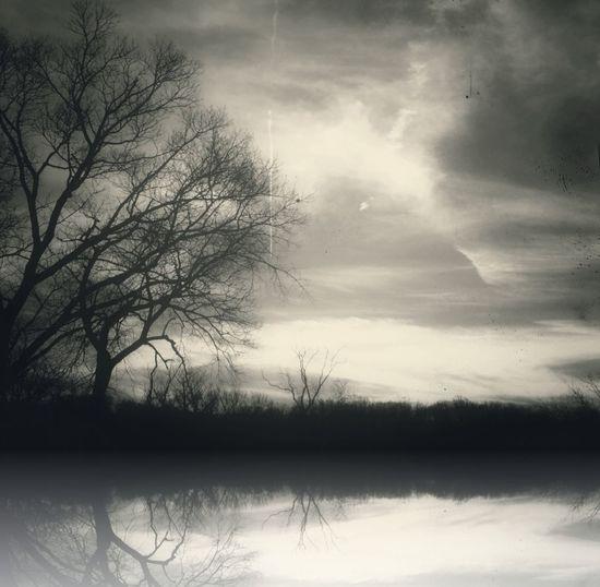 Reflection Landscape AMPt_community NEM Submissions