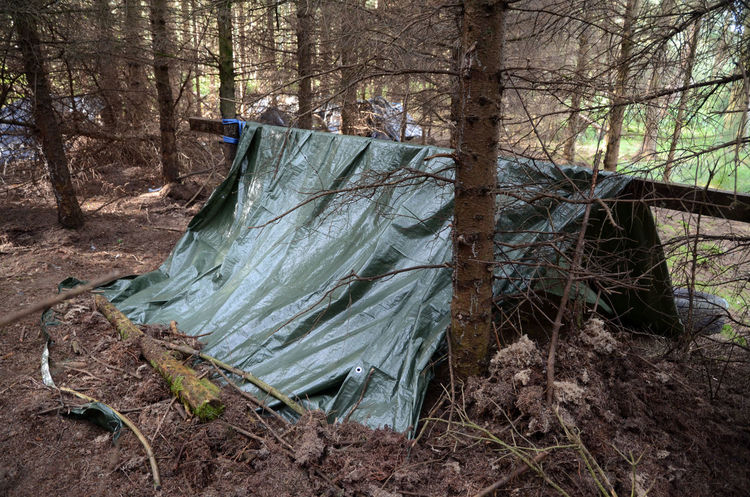 Bivouac Bivvy Camping Site Forest Improvised Shelter