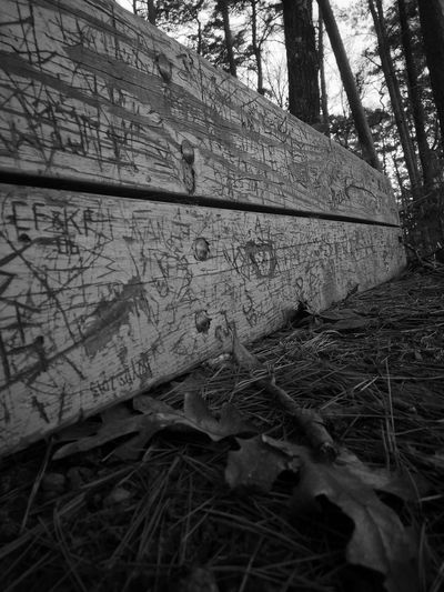Blackandwhite Down Low And Dirty Different Perspective B&w Photography