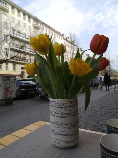 Close-up of yellow tulips in vase on table