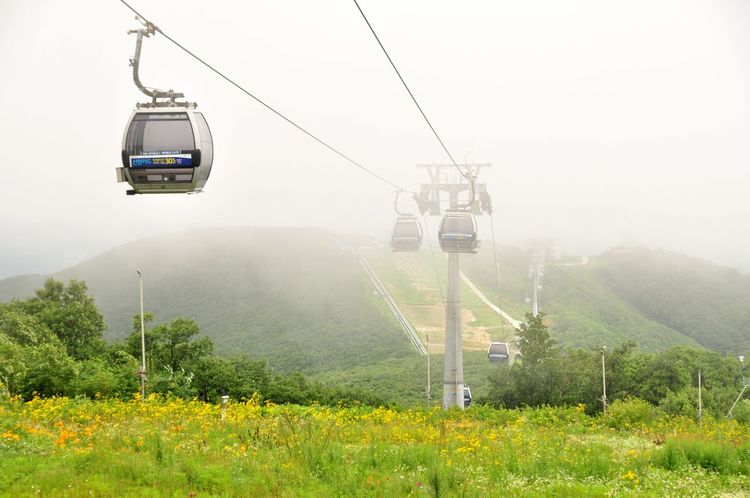 Photopackers Oksk Cable Car EyeEm Selects Mode Of Transportation Transportation Fog Plant Cable Car Overhead Cable Car