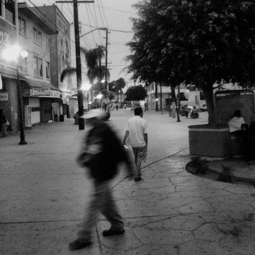 Streetphotography Avrevolucion Tijuana Fotocallejera