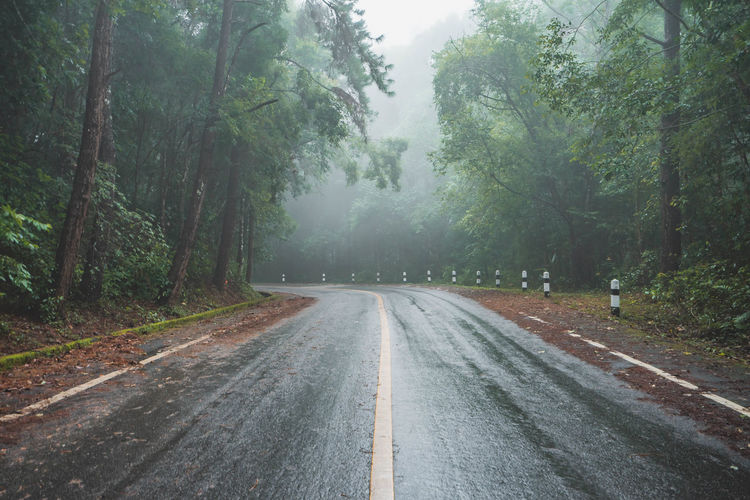 Empty road amidst trees in forest during rainy season