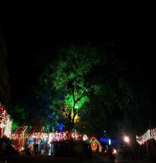 Light up ! Lifeinshots Festive Festiveseason Festivelights Festivelighting Celebrations Tree Colors Weekendtales Follow Followback Followme Likeforlike Like4like