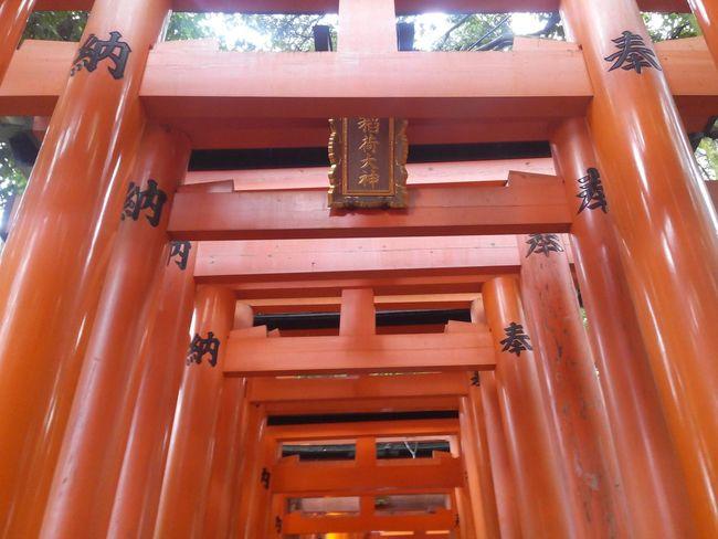 The Purist (no Edit, No Filter) No Filter, No Edit, Just Photography Travelling Fushimi Inari Taisha Japan EyeEm Japan Travel Photography Kyoto Kioto Fushimi Inari Kyoto