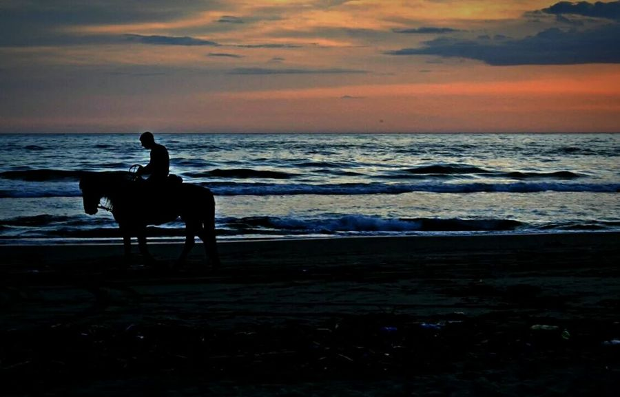 Horse Keep Calm And Snap On Lost In The Sunset Mondragone Beach Italy Seaside Sunset Silhouettes Enjoying Life Sunset