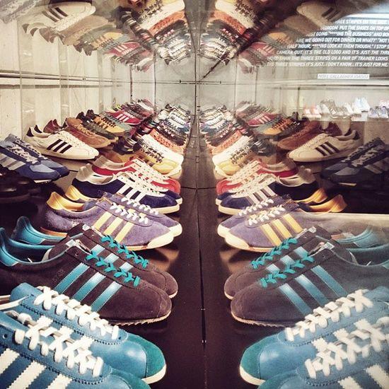 Addictdas Vscocam Adidasspezial Adidasoriginals Spezial no42paris addict adidas sneakers reflexion
