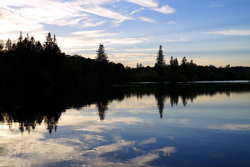 Clouds And Sky Clouds California Tree Water Lake Sunset Reflection Symmetry Sky Cloud - Sky