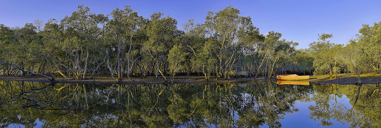 Panorama Hawkesbury River Golden Hour Light And Shadow Boat Mangroves Landscape Landscape_Collection EyeEm Best Shots - Landscape Water Reflections Full Resolution version https://m.flickr.com/photos/131222116@N06/17858948980/