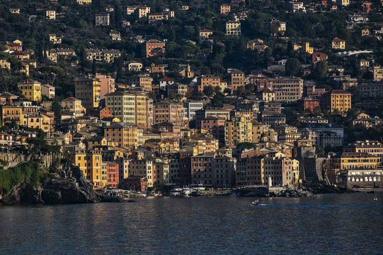 Camogli Building Exterior Architecture Built Structure City Cityscape Building Water Residential District Crowded Waterfront Sea Outdoors Nature Community Town Day Neighborhood Place TOWNSCAPE Fishing Village Camogli Mediterranean Sea Italy Liguria