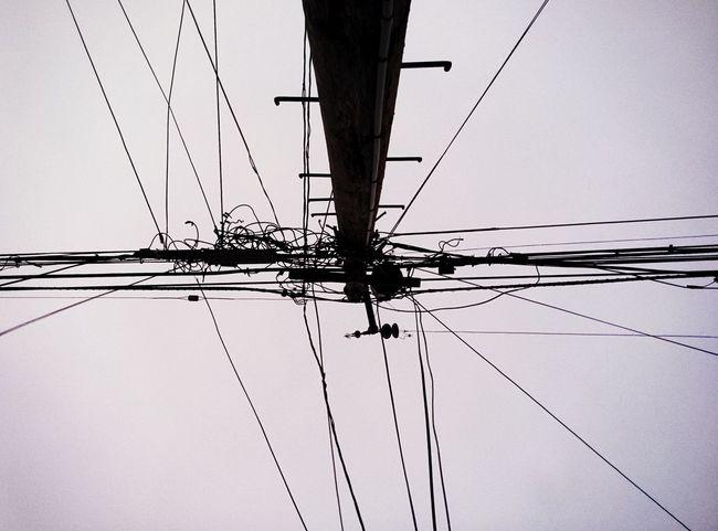 Power Line  Lookingup Monochrome
