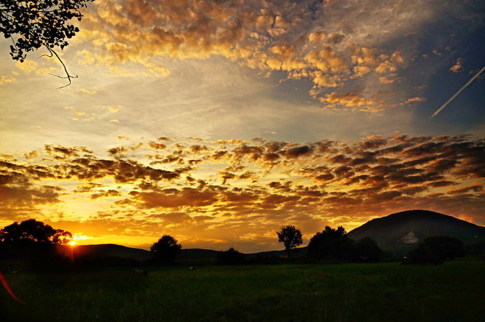 Last sun rays, sunset with scattered clouds at Mount Pilis Orange Sky Beauty In Nature Cloud - Sky Day Dramatic Sky Field Grass Landscape Nature No People Orange Color Outdoors Pilis Pilisszántó Scattered Scenics Silhouette Sky Sun Sunset Tranquil Scene Tranquility Tree